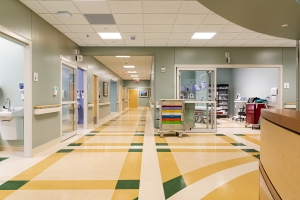 McLeod Healthcare